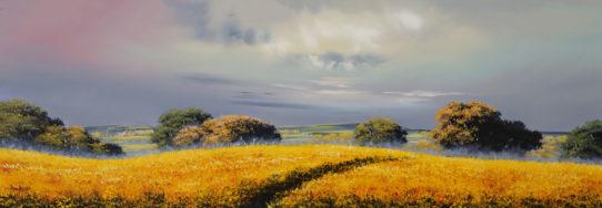 allan morgan yellow