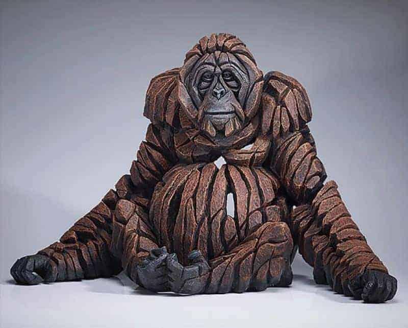 Orangutan Buckley