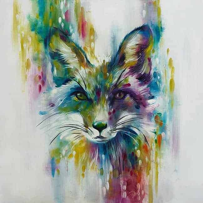 Fox – Chase Small