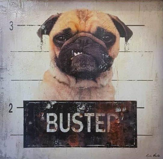 Busted II