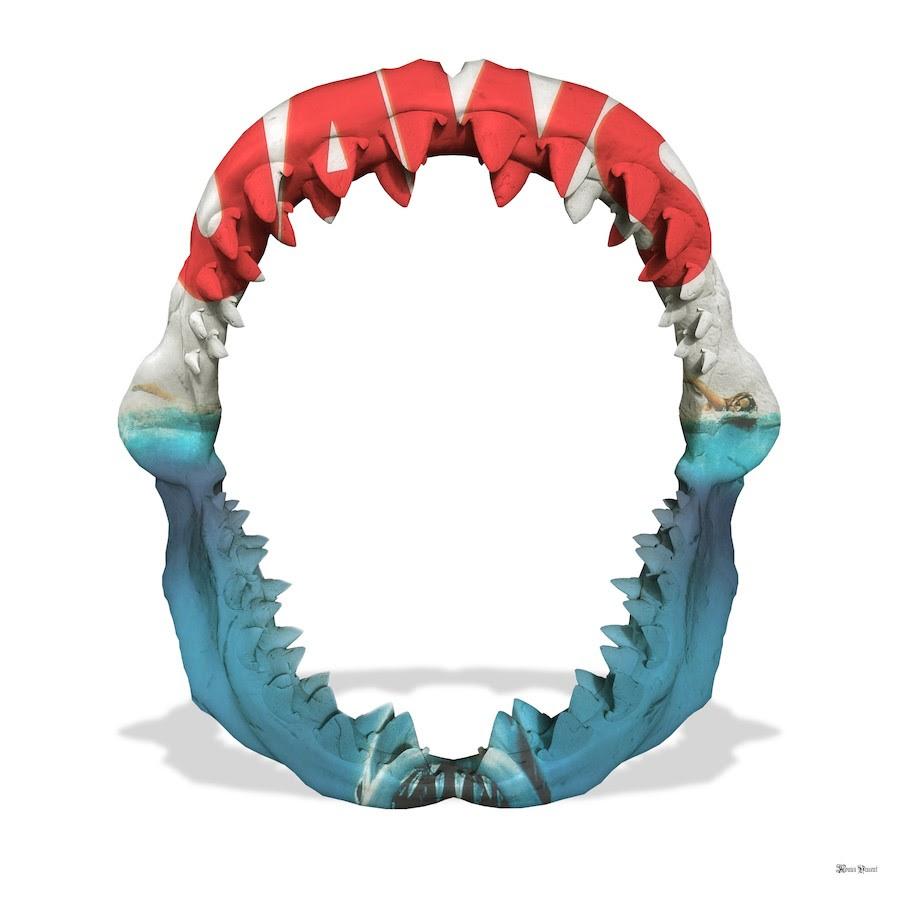 jaws white