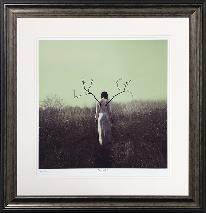 rejuvinating framed