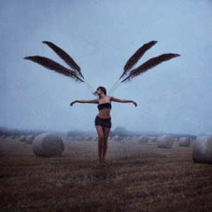 With Brave Wings She Flies by Dolly (Michelle Mackie)