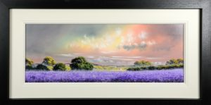allan morgan lavender purple