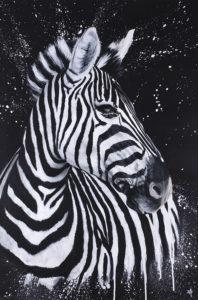 zebra dean martin